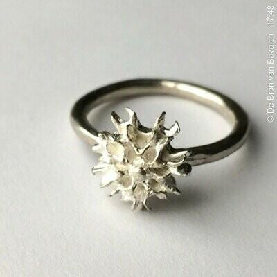Ring in massief zilver - Les Deux (België)