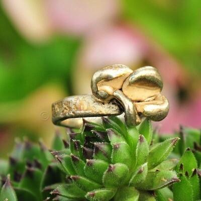 Ring in massief zilver - UNICA - Alex Fabry (België) - Maat55