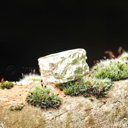 Ring in massief zilver met 2 briljantjes zirkonium - Ralf De Burchgrave (België)