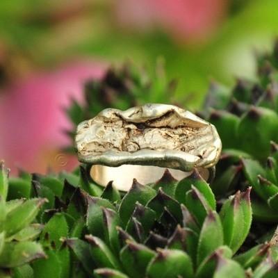 Ring in massief zilver - UNICA - Alex Fabry (België) - Maat57