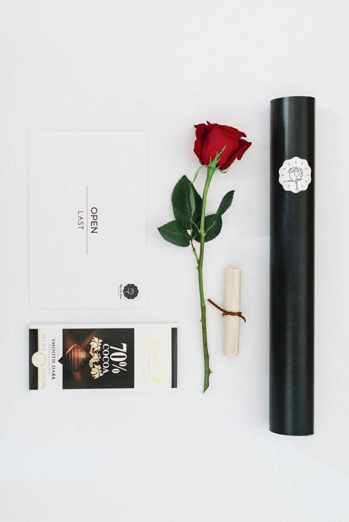 The Modern Rose