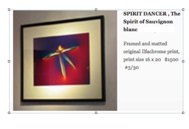 SPIRIT DANCER, sauvignon blanc 00011