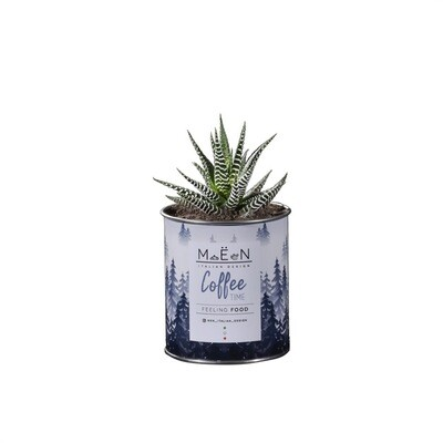 MËN - Feeling Food [Coffee]