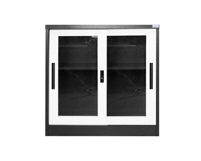 Ofix 2-Layer Glass Door steel Cabinet