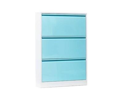 Ofix 107x80 Shoe Cabinet