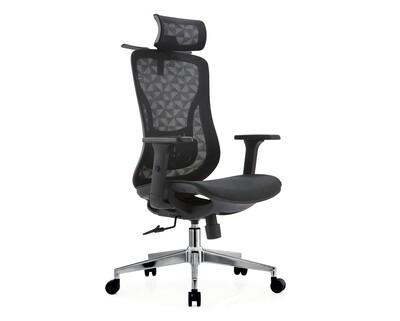Ofix Deluxe-Z13 Pro/ Z13 XTM High Back Mesh/ All Mesh Chair (Black, Grey)