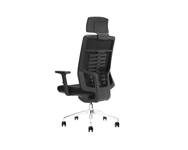 Ofix Premium X15 Bionic Spine Support High Back Chair (Seat Slide) (All Black, Sky Blue)