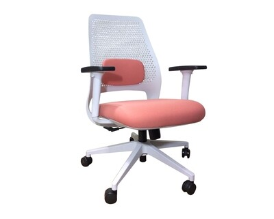 Ofix Korean S22 Ergonomic Mid Back Office Chair (Blue, Green, Peach)