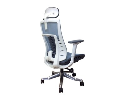Ofix Premium X25 XTM Bionic Spine Support (w/ Seat Slide) (Blue)