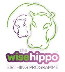 Hypnobirthing - The Wise Hippo Birthing Programme 10h course