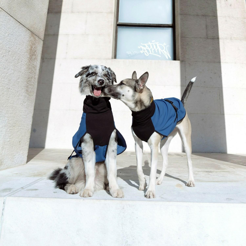 Raincoat - big dogs
