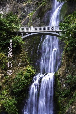 Multnomah Falls 1 --  starting at