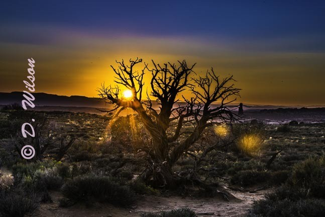 Archer National Park Sunset