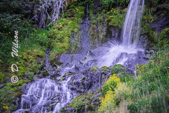 Crater Lake Vidae Falls, Or  --  starting at