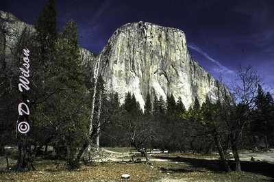 El Capitan Yosemite, CA - starting at