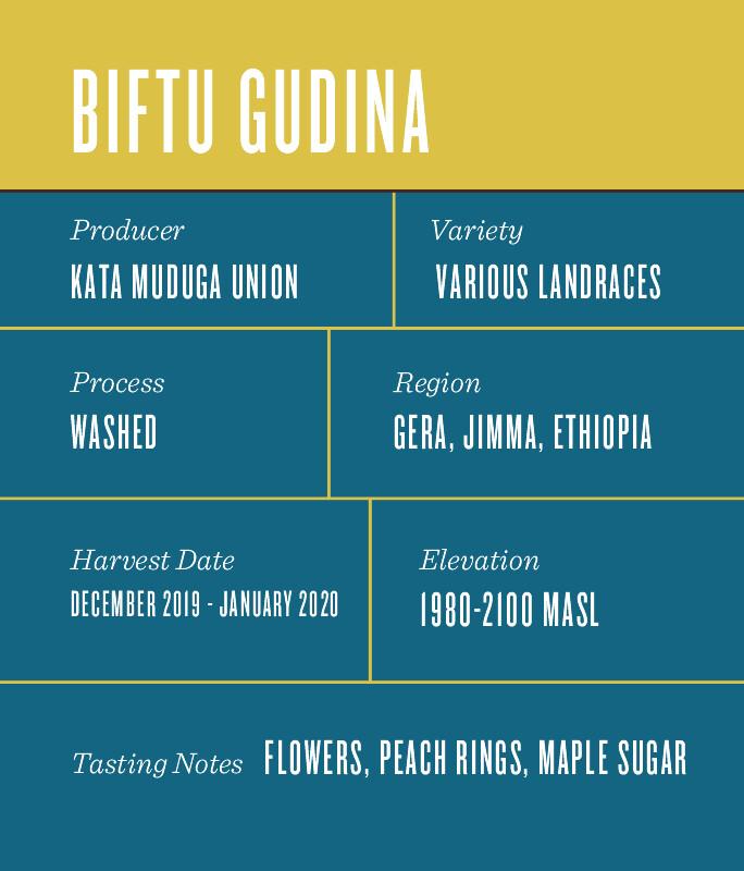 Ethiopia Biftu Gudina