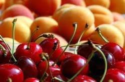 Corbeille fruitée FAMILY MENSUEL 4kgs ( 15 à 20 fruits, 4 livraisons)