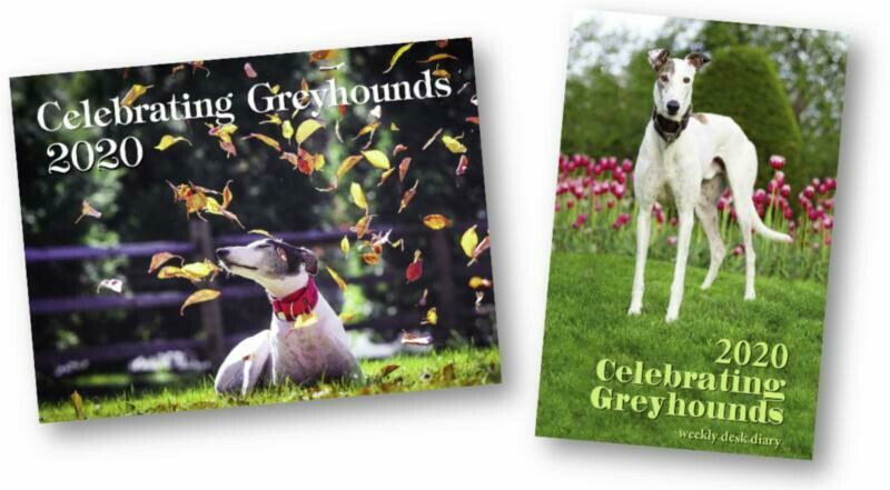 Greyhound Desk Calendar 2020
