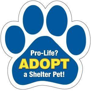 Shelter Pet Pro Life Magnet