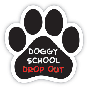 Doggy School Drop Out