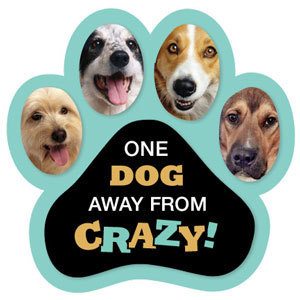 One Dog Away from Crazy