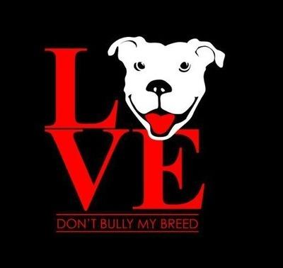 Don't Bully My Breed Sweatshirt