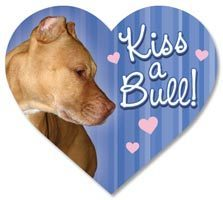 Kiss a Bull Heart Magnet