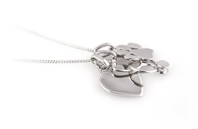 Veterinary Necklace, Stethoscope Paw Print and Heart in Sterling Silver -  Veterinarian Gift