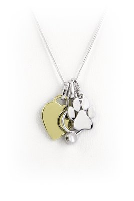 Veterinary Necklace, Stethoscope Paw Print and Yellow Gold Plated Heart Veterinarian Gift