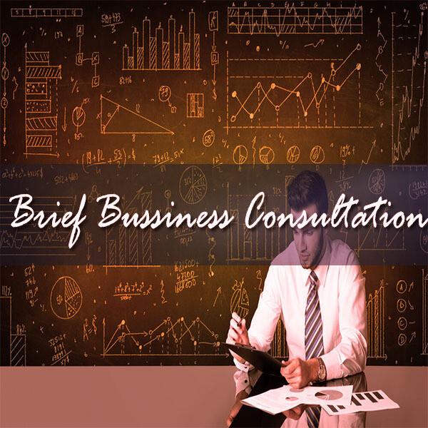 Brief Business Analysis    Understanding Startups & Entrepreneurship   Voice Session