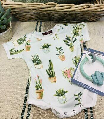 Succulent Baby Gift Basket