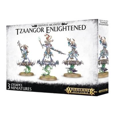 Games Workshop - Warhammer Age of Sigmar: Tzeentch Arcanites Ztaangor Enlightened