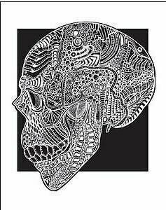 Side Skull - 8x10 Print