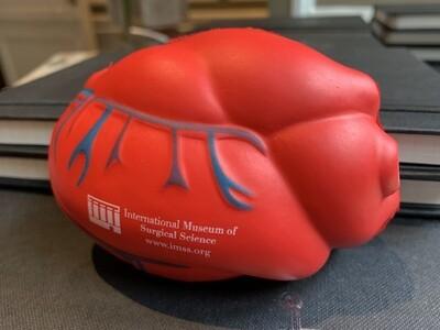 Stress Ball - Anatomical Heart