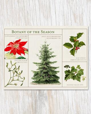 Botany of the Season Card