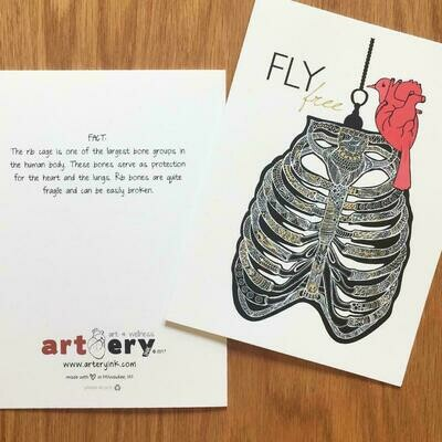 Fly Free - Any Occasion Card