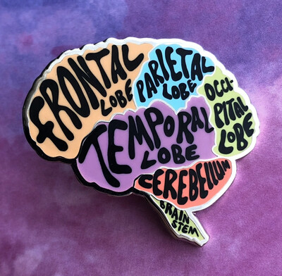 Medthusiast Brain Anatomy Pin