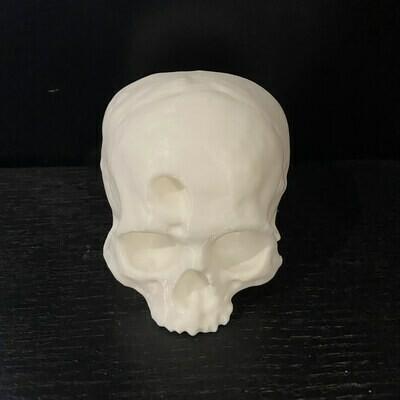 Trephined Skull 3D Print