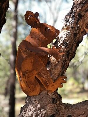 Koala Large