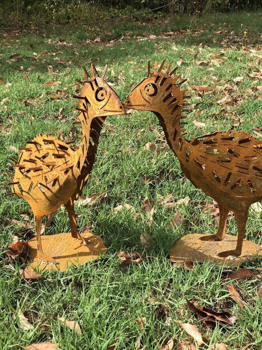 Emu Chicks