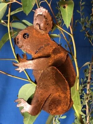 Koala Side Facing