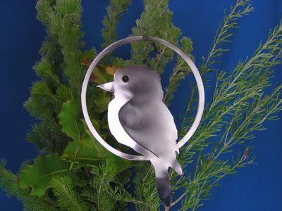 Kookaburra + Ring