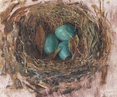 Abandoned Nest