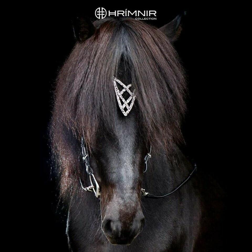 Hrimnir Heritage Headstall, Shield
