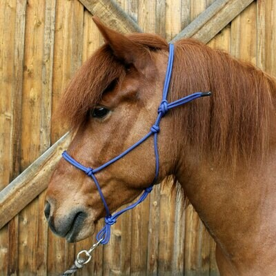 Solid-coloured Rope Halter (More colours) - Fundraiser
