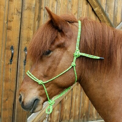 Multi-coloured Rope Halter (More colours) - Fundraiser