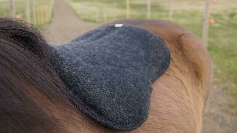 Kidka Icelandic Wool Saddle Pad