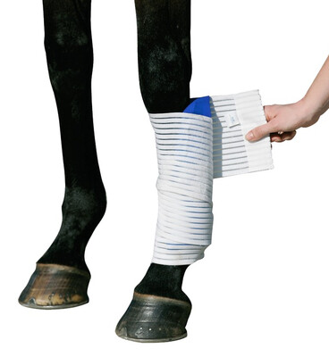Stubben - Kryo Kompakt Horse Elastic Bandage