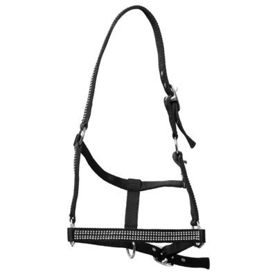 Top Reiter Halter Set DIAMOND w/Rope