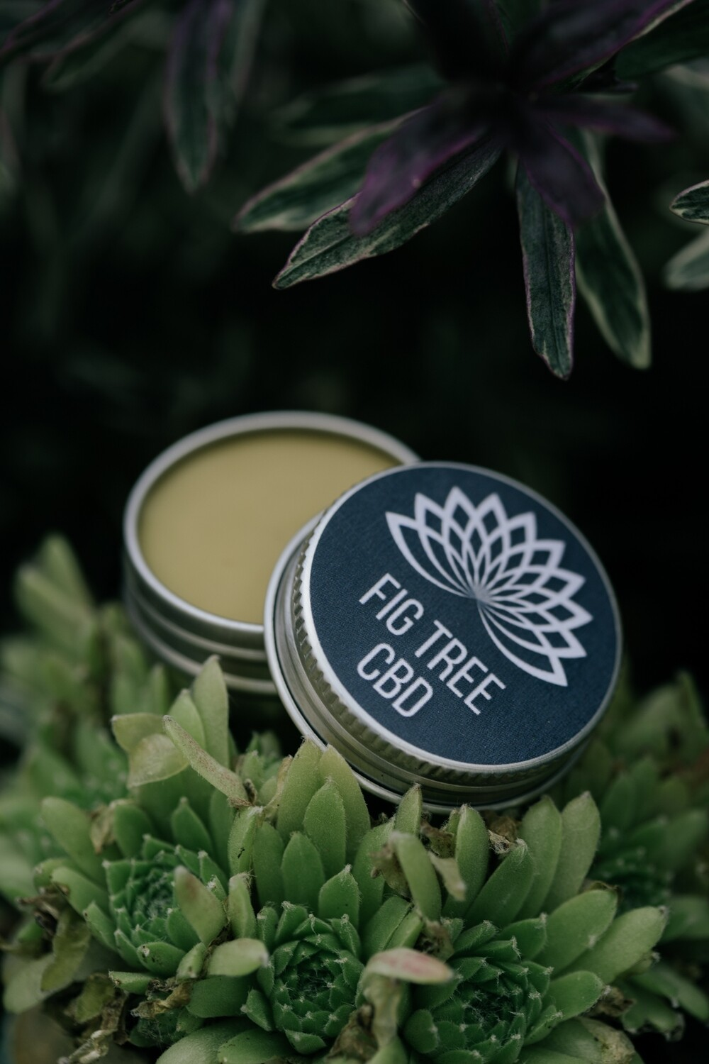Hemp CBD Entourage Lip Balm
